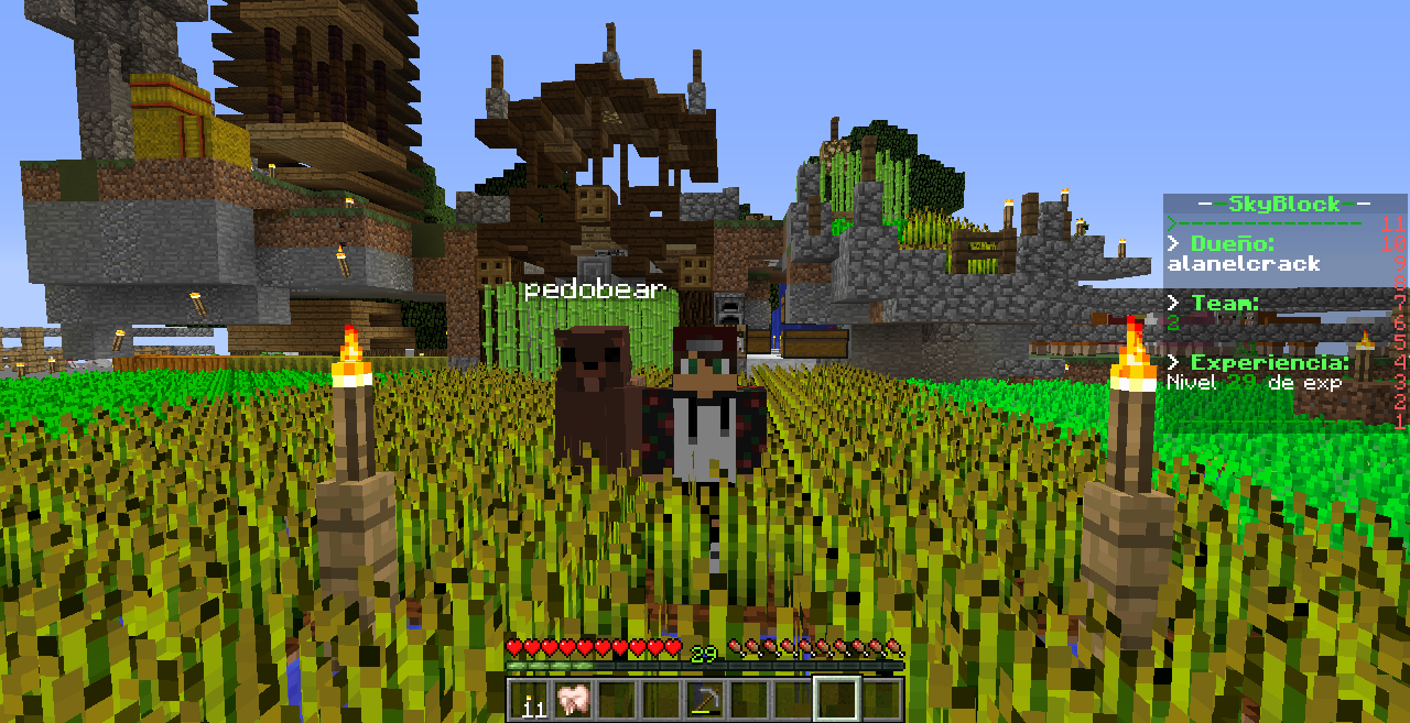 Minecraft 1.12.2 8_02_2020 5_50_21 p. m..